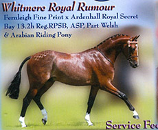 Whitmere Royal Rumour